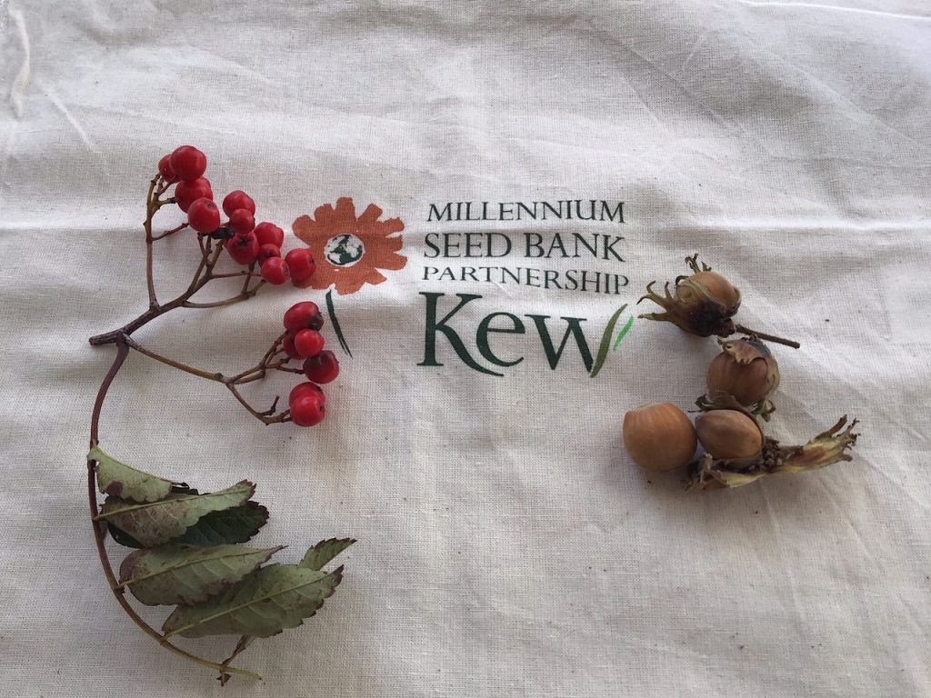 Kew Seed Bank Partnership